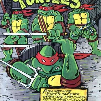 Obscure Comics: Teenage Mutant Ninja Turtles Street Collectors #1