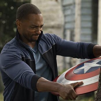 The Falcon and the Winter Soldier Star Talks Captain America Season 2