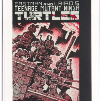 TMNT #1 Second Print Double Cover On Auction At Heritage