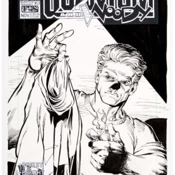 Quantum & Woody Cover by MD Bright Currently Under $100 at Auction