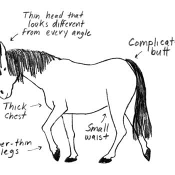 How To Draw A Horse's Emma Hunsinger's Graphic Novel, How It All Ends