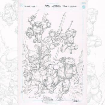 The Teenage Mutant Ninja Turtles/He-Man Crossover That Never Was
