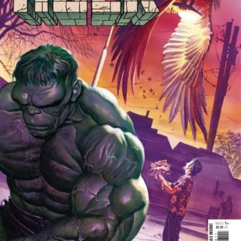 Cover image for IMMORTAL HULK #48