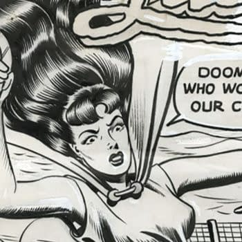 Can You Identify The Phantom Lady #2 Cover Artwork Artist At Auction?
