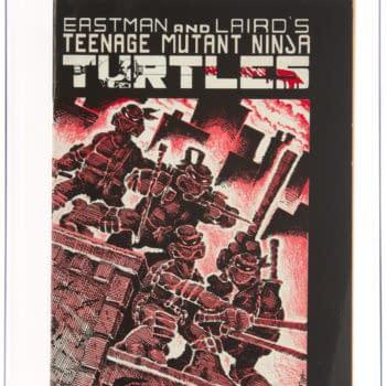 Teenage Mutant Ninja Turtles #1 Goes Under The Hammer, Today