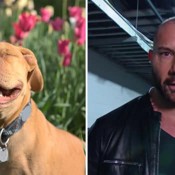 Dave Bautista has lots of love for pit bulls.