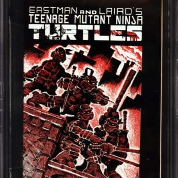 TMNT #1 First Print Over $35,000 On Auction At ComicConnect