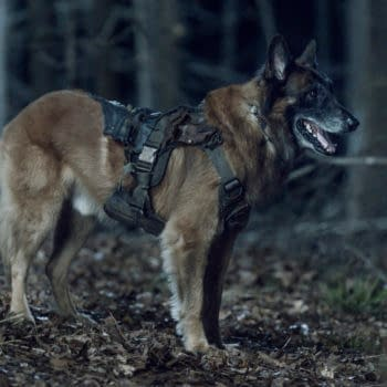 """The Walking Dead Season 11 """"Rendition"""" Even Left Me Hating Dog: Review"""
