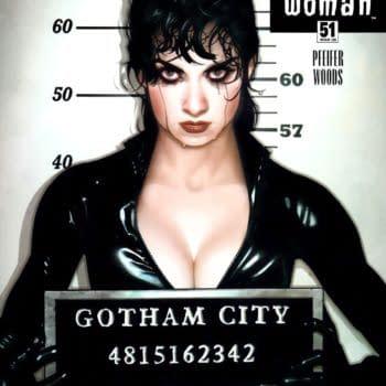 Batman/Catwoman Reprises Adam Hughes Catwoman #51 Mugshot Cover