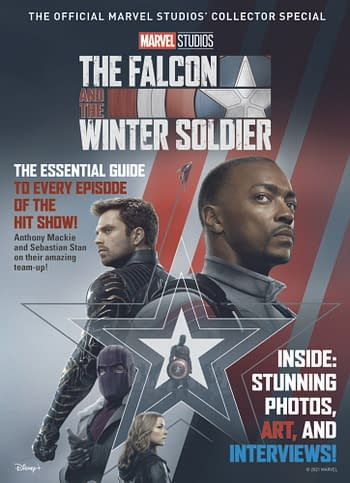 Cover image for MARVEL FALCON & WINTER SOLDIER SPECIAL SC