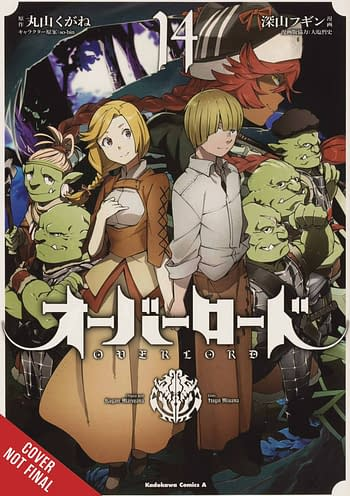 Cover image for OVERLORD GN VOL 14 (MR)