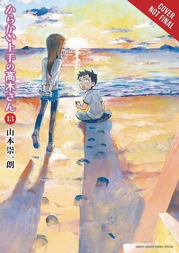 Cover image for TEASING MASTER TAKAGI SAN GN VOL 13