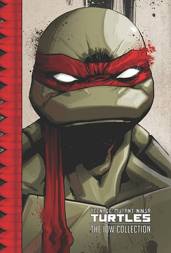 Cover image for TMNT ONGOING (IDW) COLL TP VOL 01