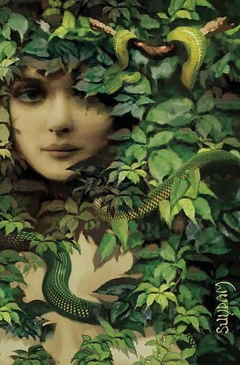 Cover image for SHEENA QUEEN JUNGLE #2 CVR L SUYDAM LTD VIRGIN