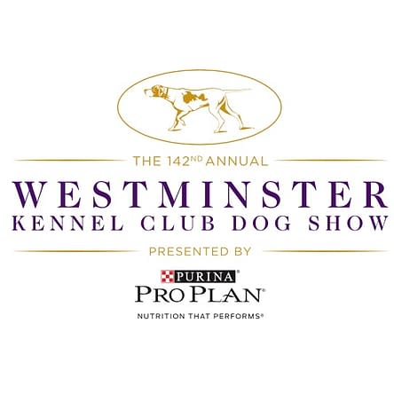 [2018 Westminster Dog Show] Bleeding Cool's 'Best in Show' Dogs!