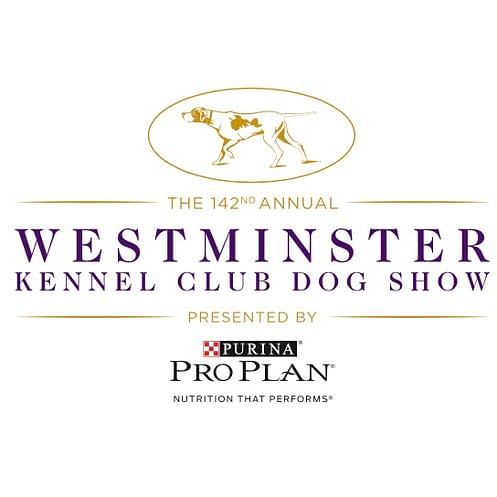 2018 westminster dog show bc live blog