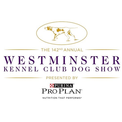 2018 westminster dog show 2017 best show
