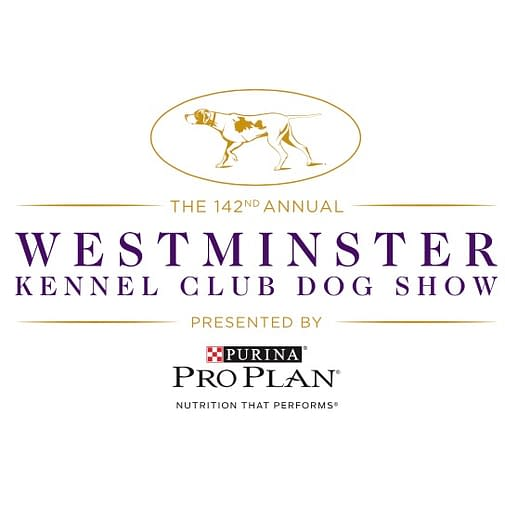 2018 westminster dog show non sporting
