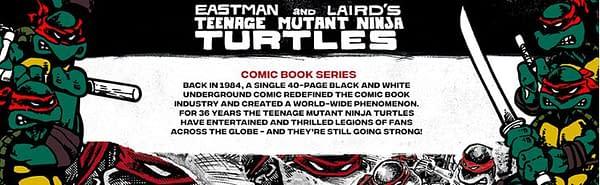 TMNT Gets Original Comic Book Deco Bundle from Playmates