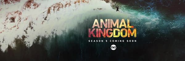 Animal Kingdom Season 5 - What We Know