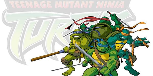 Teenage Mutant Ninja Turtles Circa 2003s Smash-Up #1