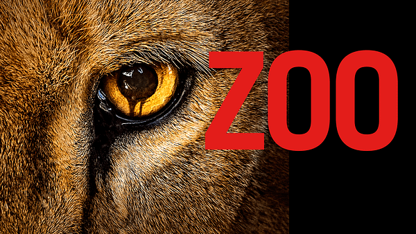 Zoo: CBS Cancels Drama Series After Three Seasons