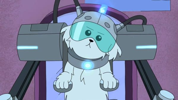 A look at Snowball from Rick and Morty (Image: Adult Swim)