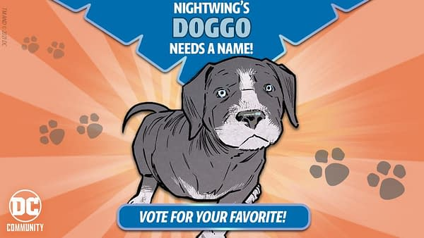 DC Comics wants you to decide the fate... er, we mean the name of Nightwing's new pup!