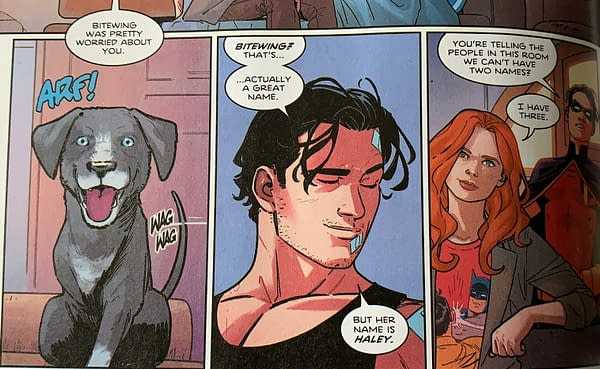 What's In A Name - Nightwing