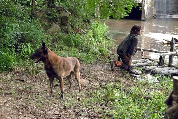 The Walking Dead (Image: AMC Networks)