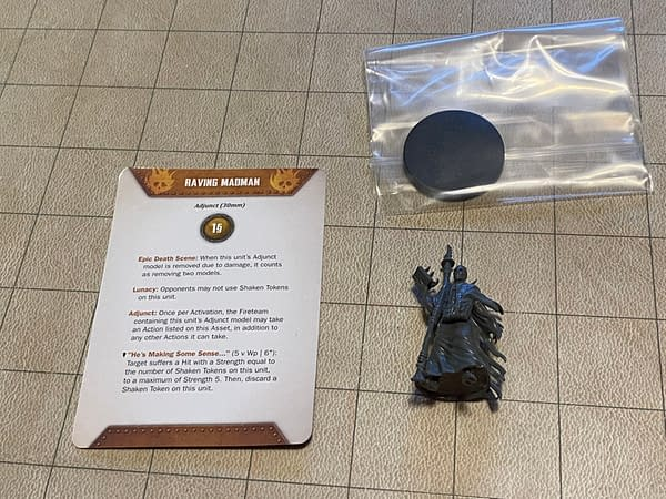 An array of contents from the Raving Madman box by Wyrd Miniatures.