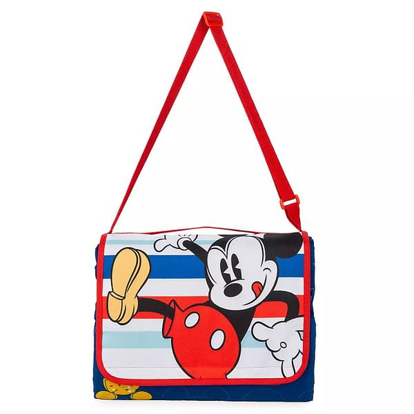 5 of the Cutest Disney Picnic Items for the Summer!