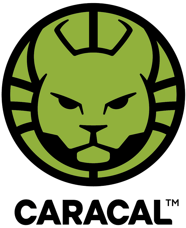 Lion Forge Launches Caracal, a New Middle Grade Imprint