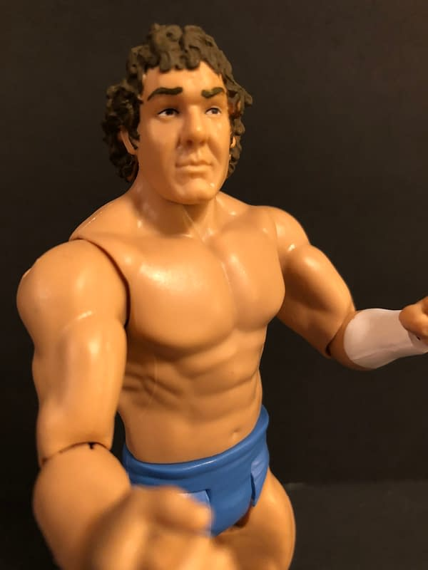 WWE Flashback Mattel Figures Should be Part of Your Collection