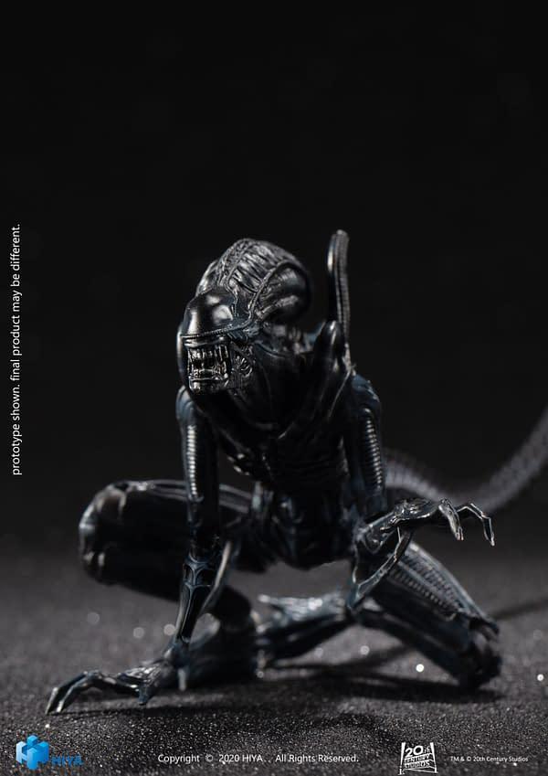 New Crouching Alien Xenomorph Arrives at Hiya Toy