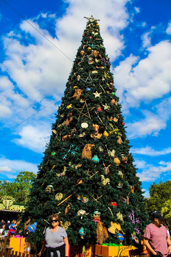Pictures from Disney's Animal Kingdom During the Holiday Season