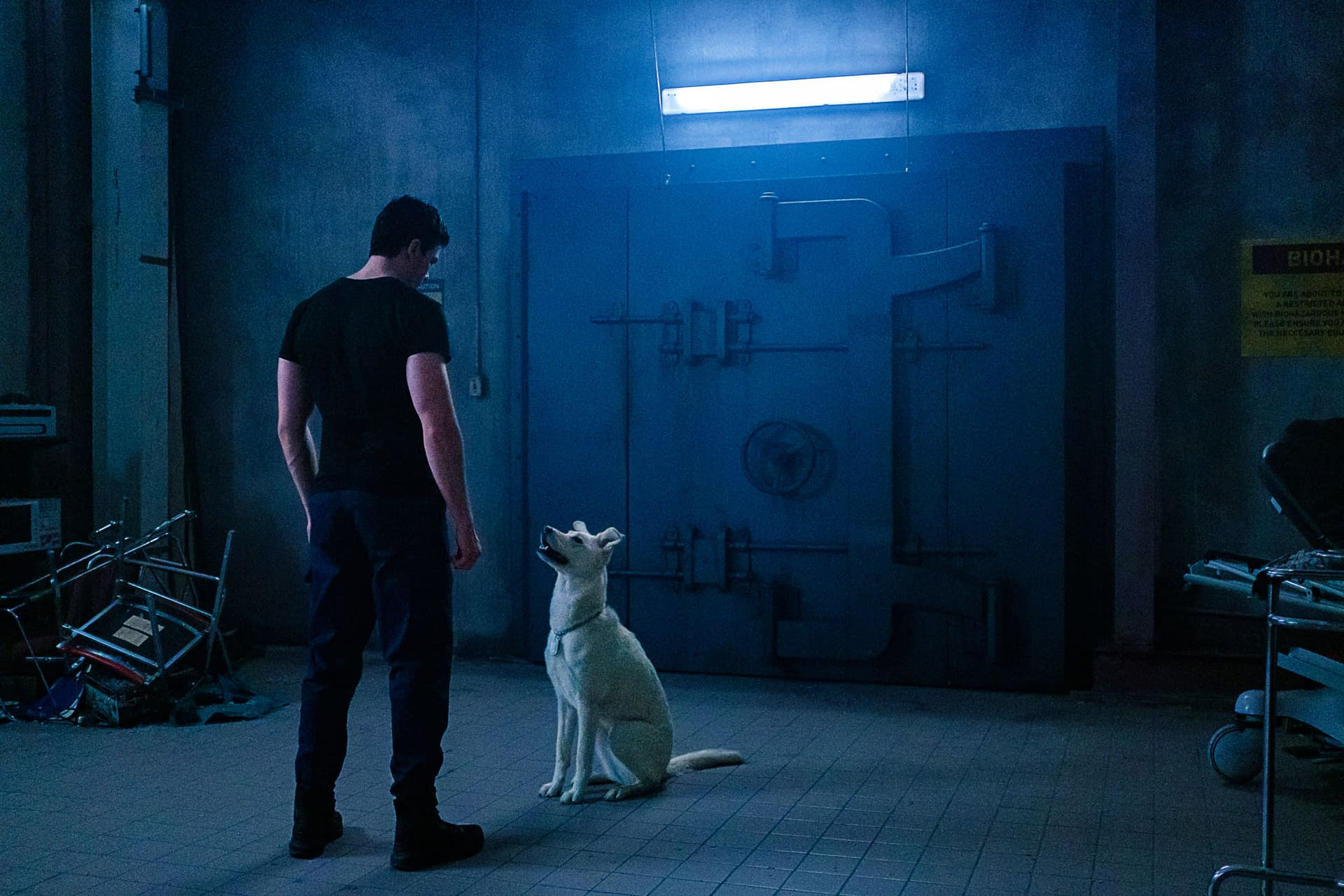 Titans Season 3 Star Joshua Orpin Introduces Series Newest Krypto © 2020 by yify movies. titans season 3 star joshua orpin