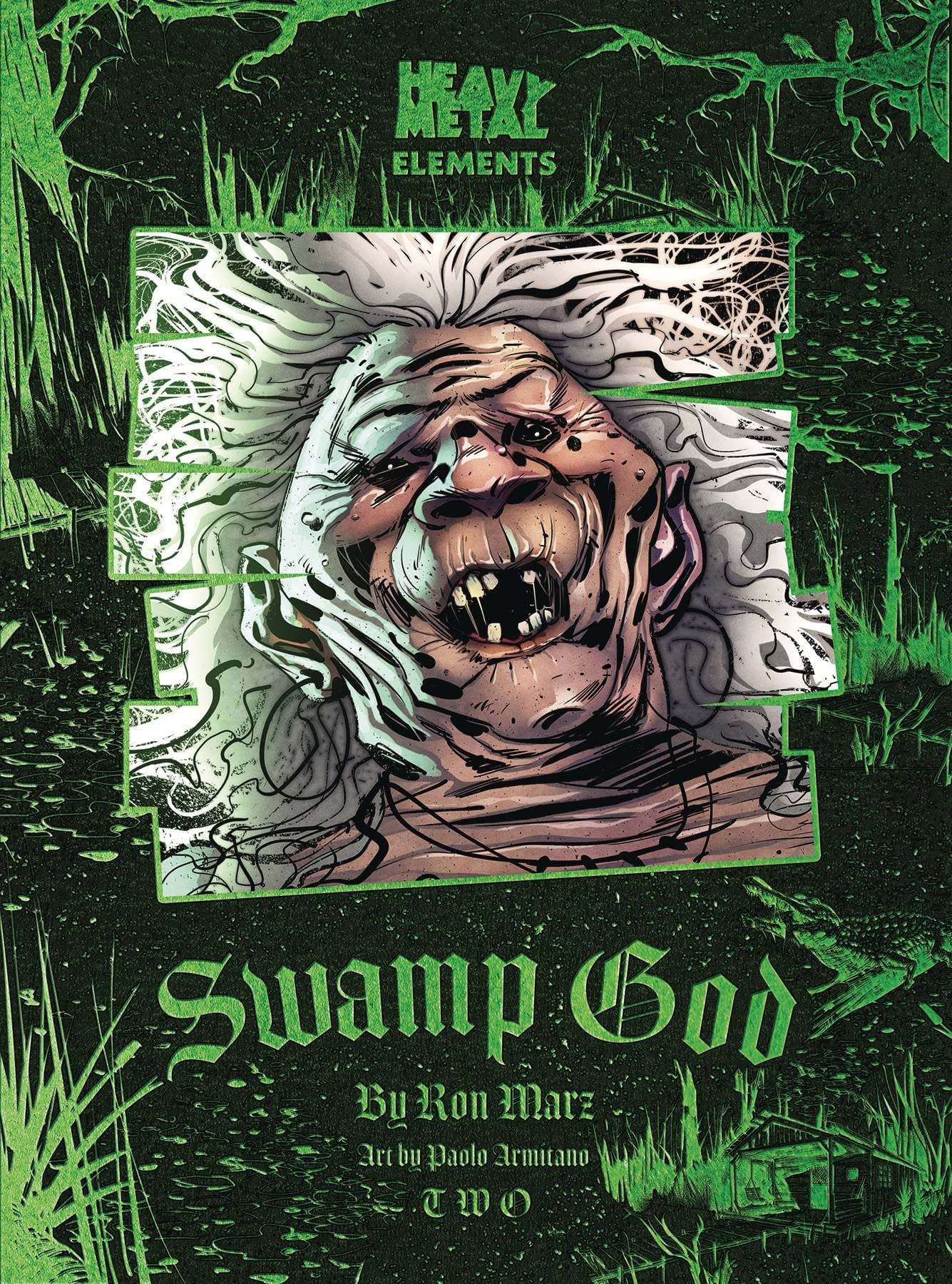 SWAMP GOD #2 (OF 6) (MR)