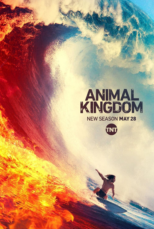 Animal Kingdom season 4 trailer and release date