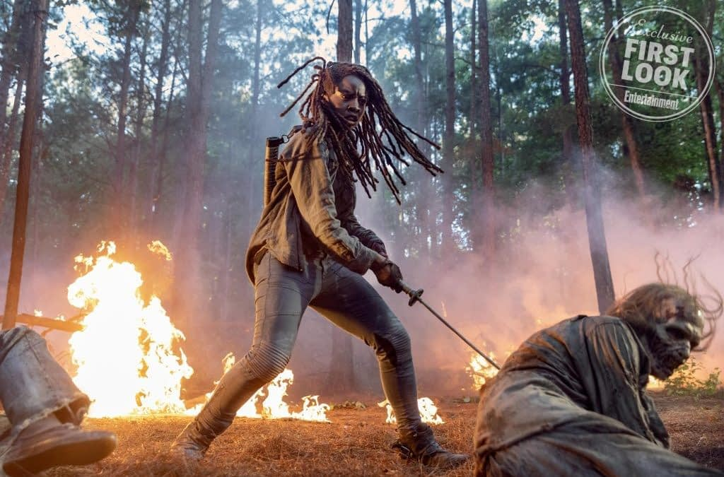 """""""The Walking Dead:"""" Michonne Leaving & More Gory Details from SDCC"""