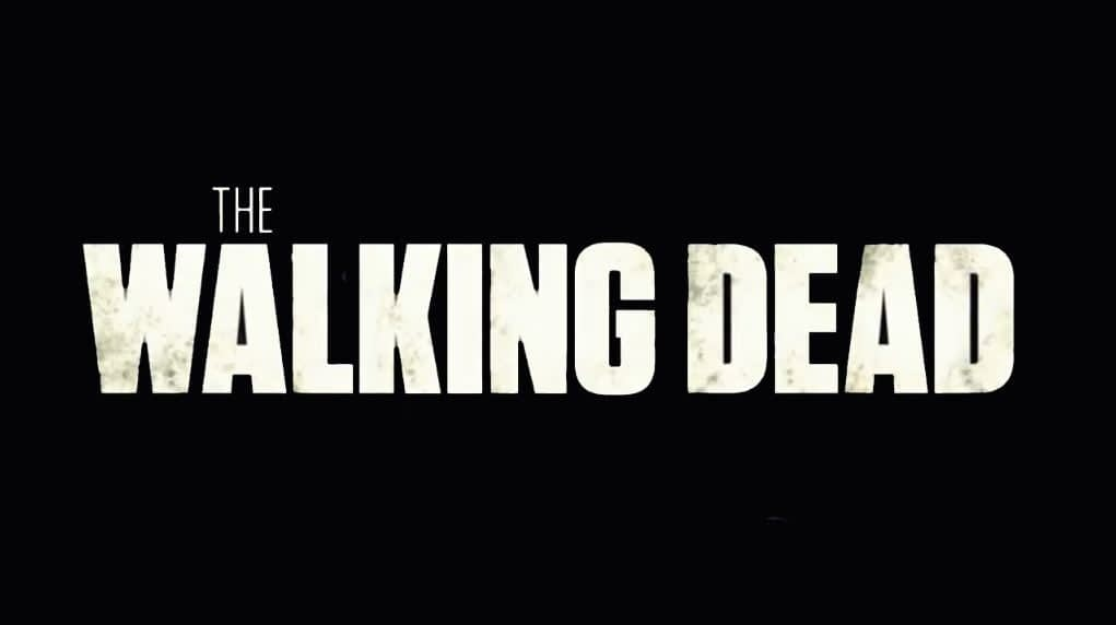 """The Walking Dead"": Season 11 Announced, The Princess Casting, and NYCC Exclusive Poster"