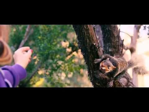Ludicrous First Trailer For Killer Rodent Movie, Squirrels, From Producer Timur Bekmabetov