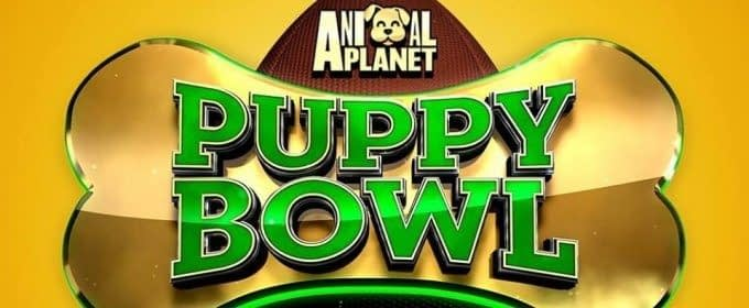 Animal Planet's Puppy Bowl XIV Sets Ratings Record, Unlike Super Bowl