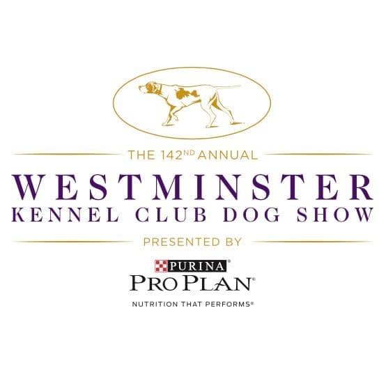 [2018 Westminster Dog Show] TV Spotlight: Terrier Group