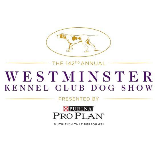 [2018 Westminster Dog Show] TV Spotlight: Terrier Group