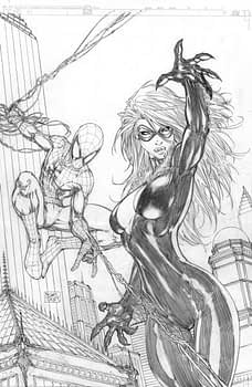 Spidermanblackcat(g#17652BE_0