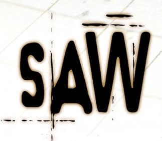 did_you_see_saw
