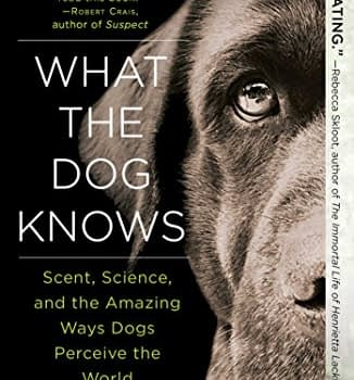 What the Dog Knows by Cat Warren, Softcover
