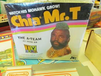 Chia Mr. T
