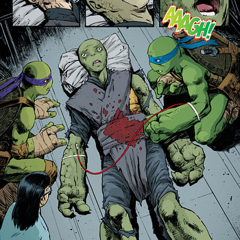 First Female Teenage Mutant Ninja Turtles Makes TMNT #95 a $30 Comic on eBay